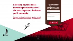 marketing director roles